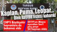 HAYVANLARA DA BAKAMAZ OLDULAR! TARSUS HAYVAN PARKI'NDA ÖLÜMLER ÇOĞALDI…